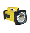 Link to details about Rechargeable LED Spot/Flood Lights.